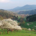 Breitenbach-13-4-09-29