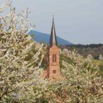 Breitenbach-4-04-10