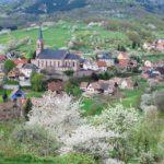 Breitenbach-4-2009-10