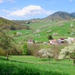 Breitenbach-4-2009-6