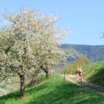 Breitenbach-4-2009-7