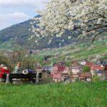 Breitenbach-4-2009-9
