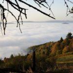 Breitenbach-Pelage-10-2010-21