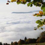 Breitenbach-Pelage-10-2010-31